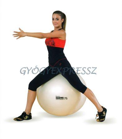 Fit Ball labda